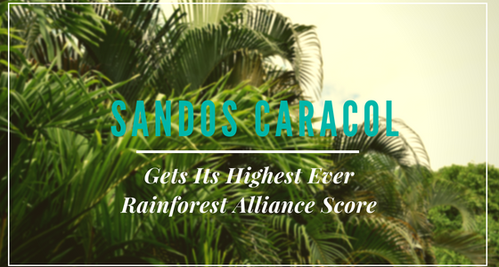 Sandos Caracol Gets Its Highest Ever Rainforest Alliance Score