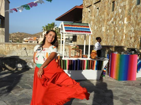 kermes mexicana