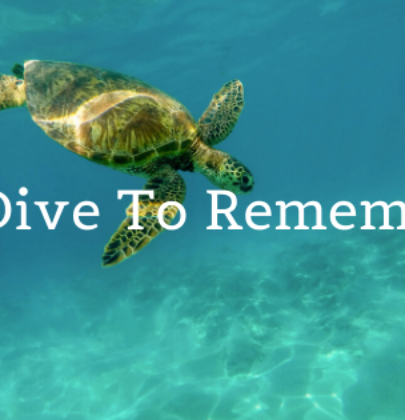 Spectacular Scuba Diving in Cozumel