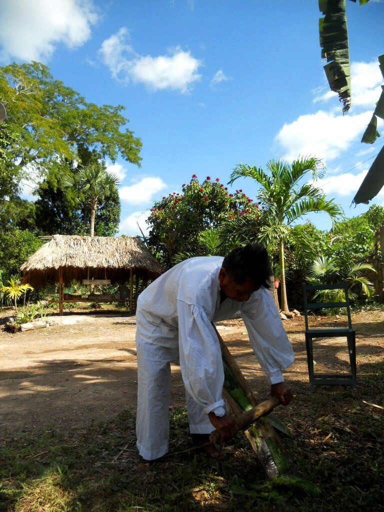 Mayan community Mexico 2