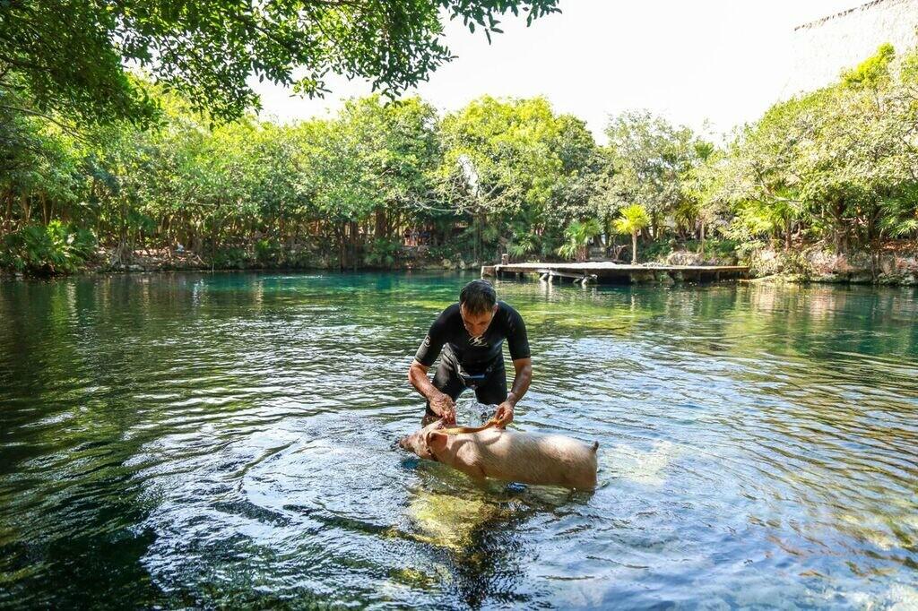 Riviera Maya Sandos Caracol cenote