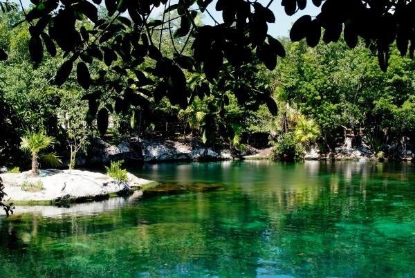 Riviera Maya cenote
