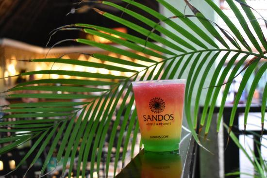 Sandos Caracol Eco Resort bar cocteles