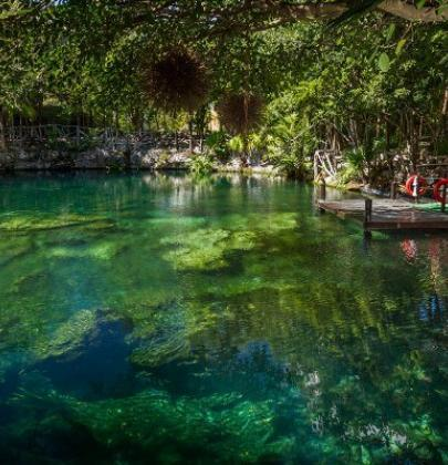The Best Cenotes In The Riviera Maya