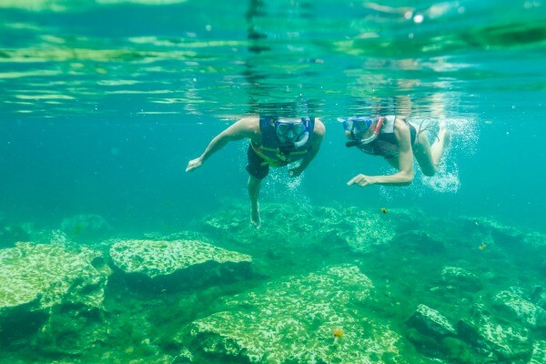Sandos Caracol resort cenote Riviera Maya