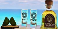 Sandos tequila by the beach