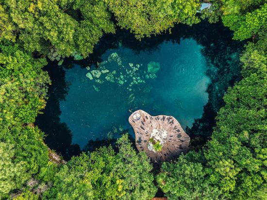 ¿Sabías que recientemente obtuvimos un año más la certificación RainForest Alliance, entre cuyos parámetros de evaluación están los factores sociales, ambientales y culturales?
