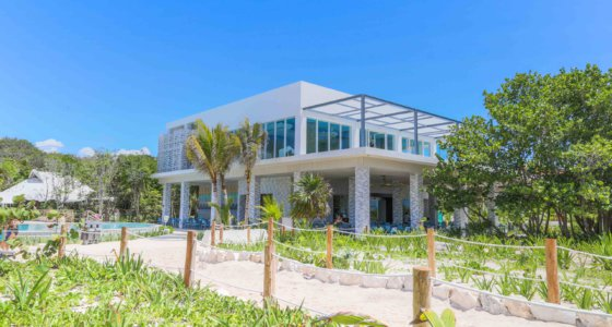 Hungry? Meet the new Oceanfront Snack Bar at Sandos Playacar