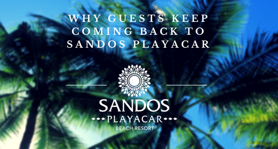 Why guests keep coming back to Sandos Playacar