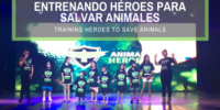 UN PASO ADELANTE HACIA LA CONCIENCIA ANIMAL (2)