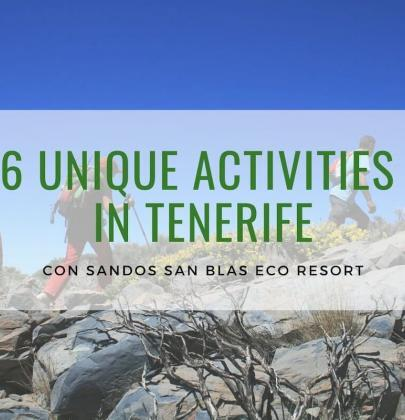 What To Do in Tenerife? The 6 Most Essential Activities in Tenerife