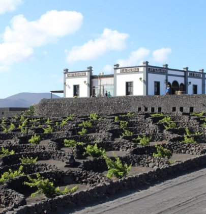 La Geria, the land of the wine in Lanzarote