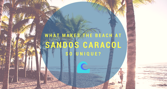 What Makes the Beach at Sandos Caracol so Unique?